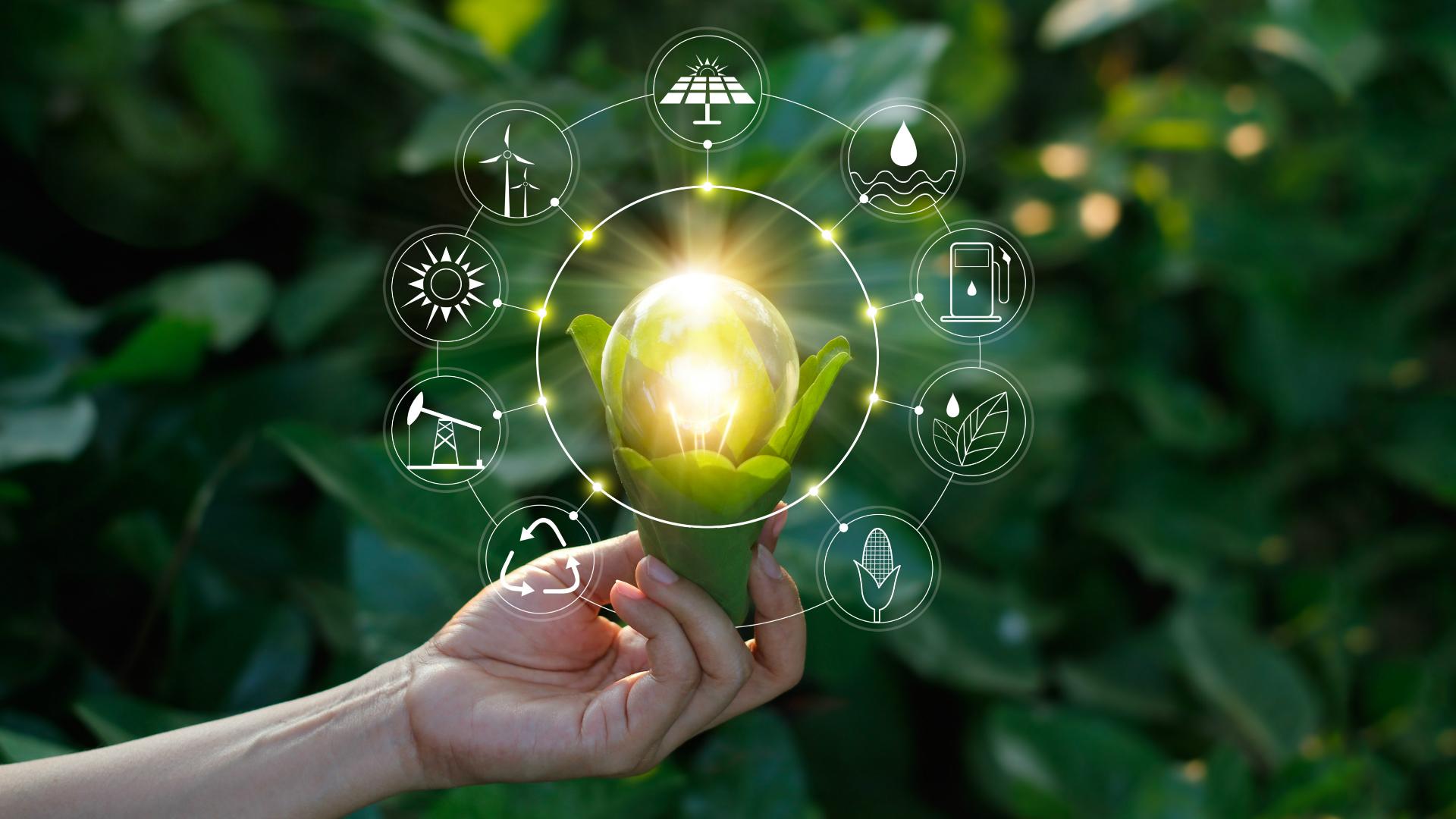 sustainability-hand