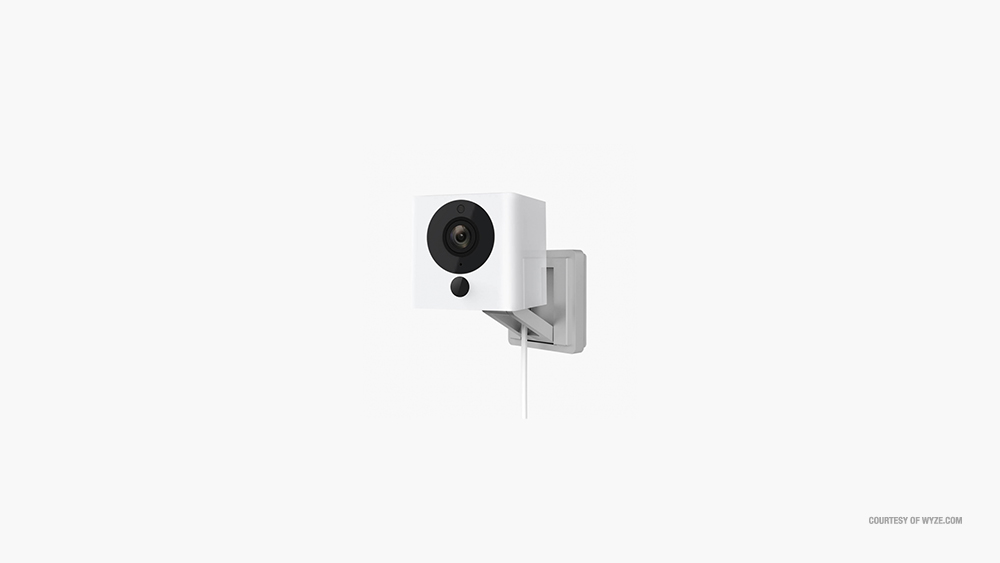 wyze cam not sending alerts - how to fix